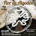 Kit FLOR DE ALGODÓN